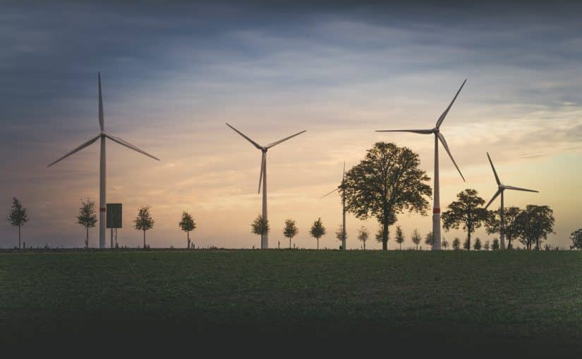 Is Investing in Green Energy Financially Savvy?
