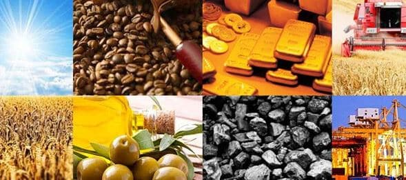 How to become a top commodity trader